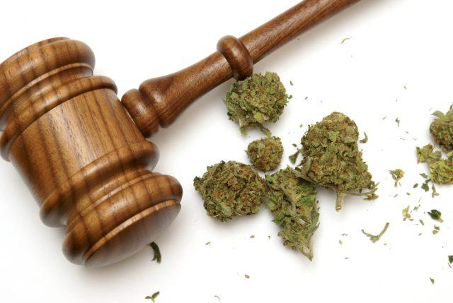 Posiadanie marihuany a umorzenie postępowania